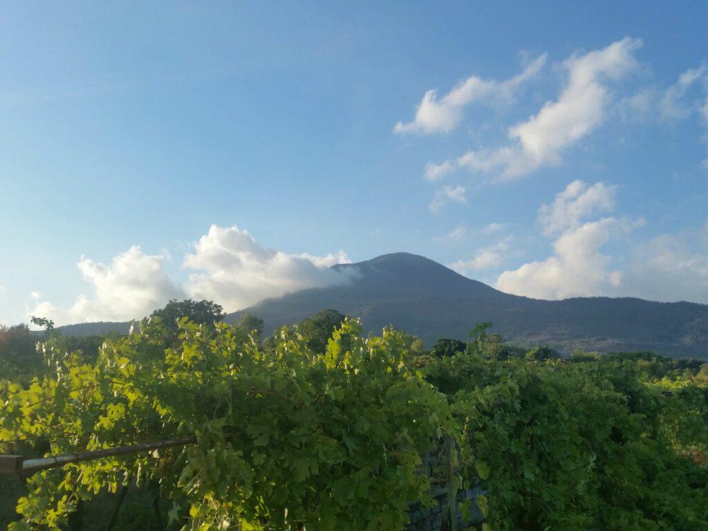 WIjn proeven op de Vesuvius